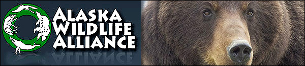 ALASKA WILDLIFE ALLIANCE